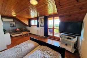 nr100-ferienhaus-andras_33